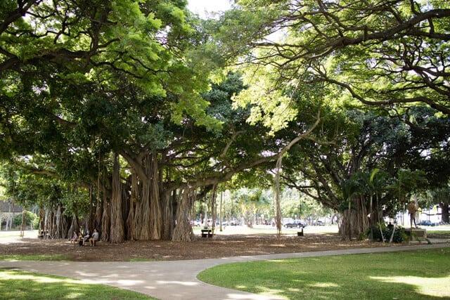 ハワイカピオラニ公園