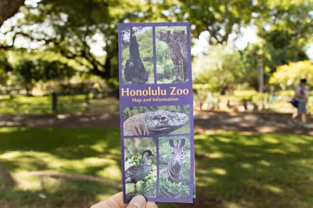 ホノルル動物園パンフ